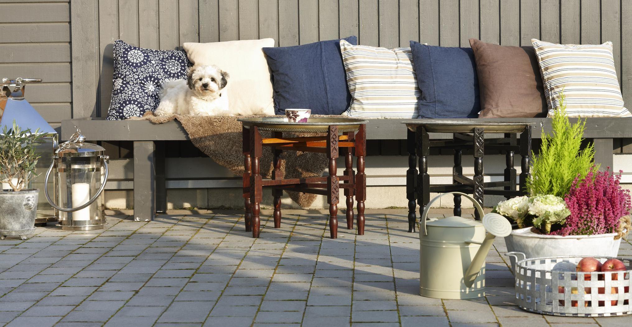 grå träfasad uteplats bänk kuddar hund