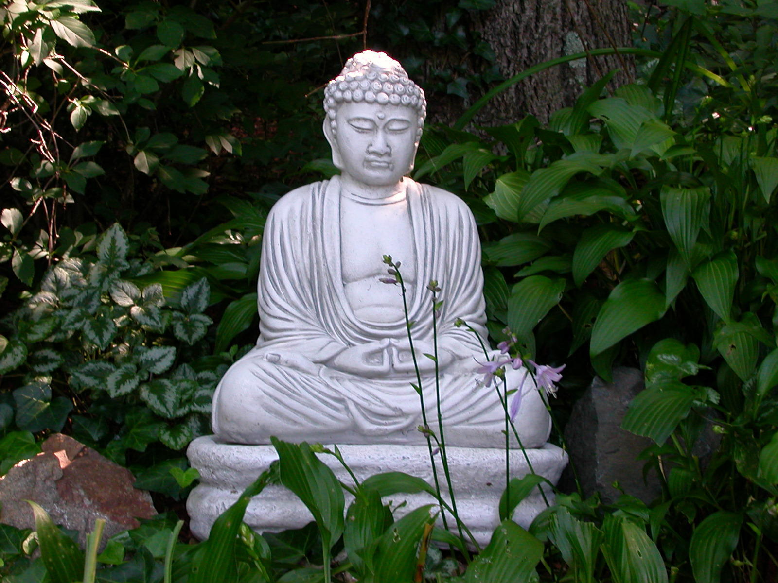 Feng shui trädgård
